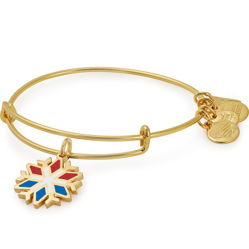 Alex and Ani Bracelet by Alex and Ani